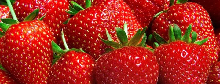 Top strawberries for 2012